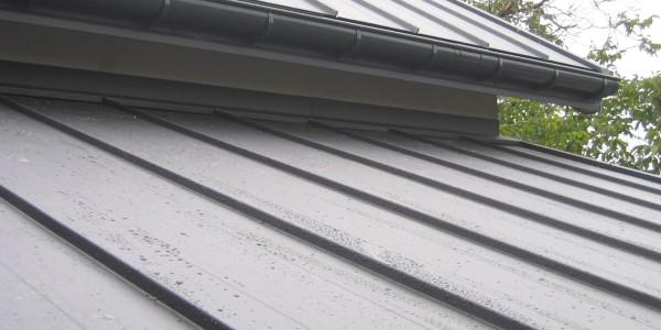 ruukki-plienine-stogo-danga-valcinis-profilis